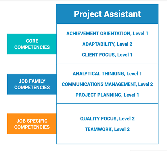 competency profile example