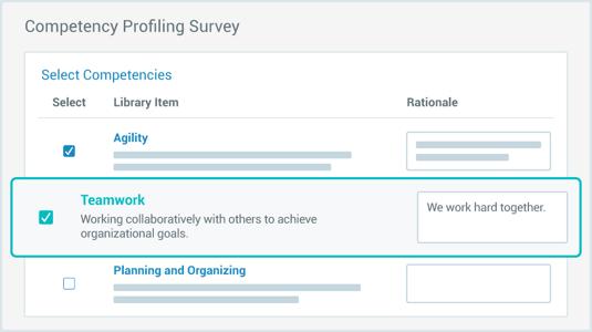 screenshot of competency profiling survey
